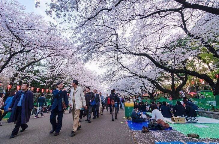 Japan Photo Trip
