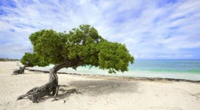 10 praias sensacionais na América do Sul que merecem sua visita