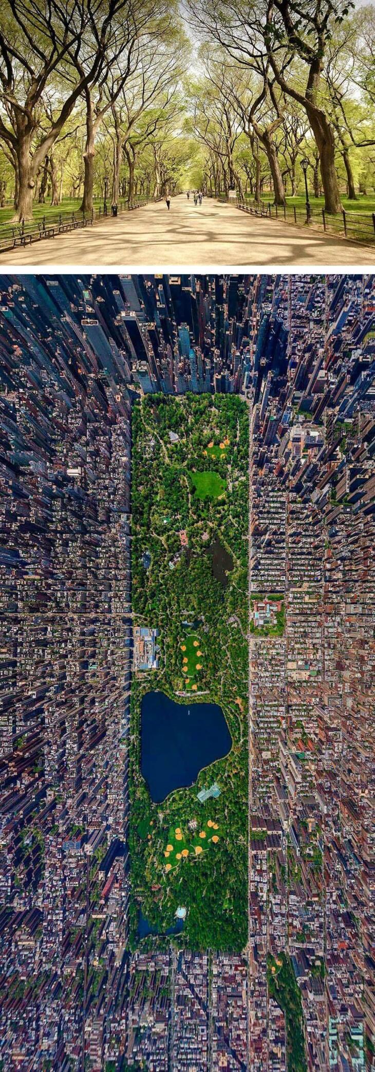 Fonte: Reprodução / Arquitetura Sustentável