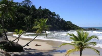 9 motivos especiais para você viajar para Itacaré na Bahia