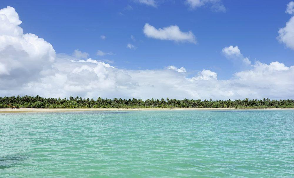Guia da Bahia
