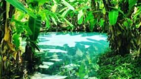 11 motivos para você conhecer Jalapão, no Tocantins, e ter férias inesquecíveis