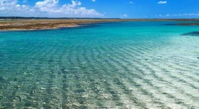 4 praias em São Miguel dos Milagres que você precisa conhecer