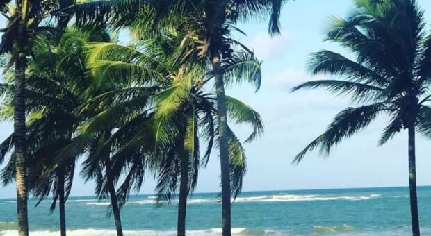 Guarajuba: descubra e se apaixone por essa maravilha do litoral baiano
