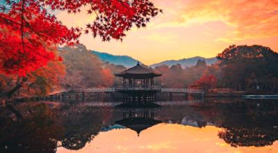 Nara: toda a tradição e magia da primeira capital do Japão