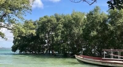 Ilha de Maré: descubra as praias e belezas naturais na Bahia