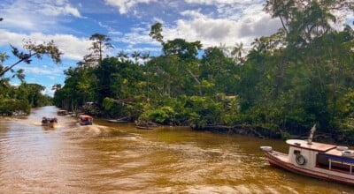 Descubra os encantos da Ilha do Combu em Belém do Pará