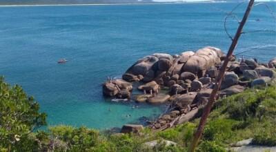 Piscinas naturais da Barra da Lagoa: visite esse paraíso de Floripa