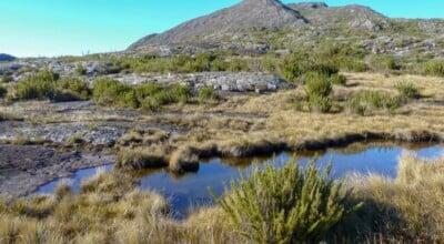 Alto Caparaó: o melhor lugar para o ecoturismo em Minas Gerais