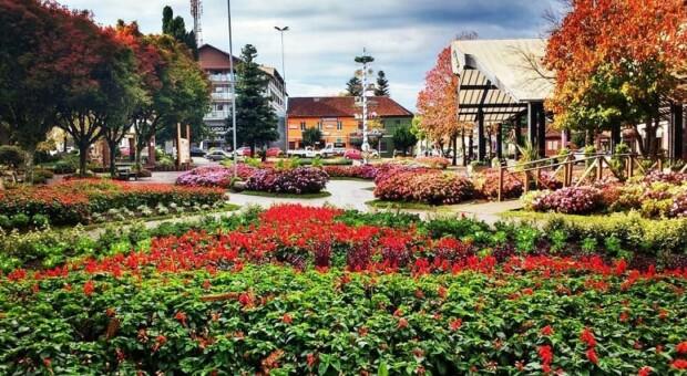 Nova Petrópolis: o que fazer nessa charmosa cidade da Serra Gaúcha