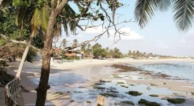 Praia da Taíba: conheça um dos mais belos cenários do Ceará