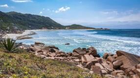 Praia da Galheta: conheça esse paraíso escondido em Florianópolis