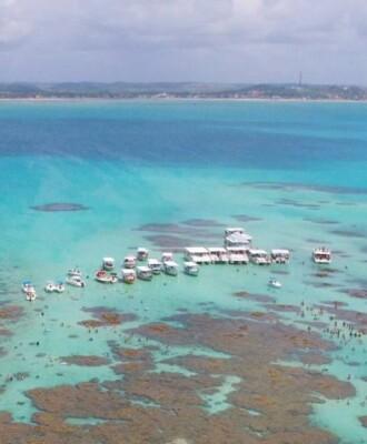 8 dicas para aproveitar o passeio pelas piscinas naturais de Maragogi